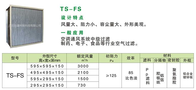 TS-FS