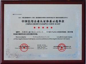中国信用企业认证体系示范单位证书